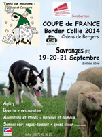 2014-championnat-france-border-collie-sombernon