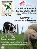 2014-championnat-france-border-collie-sombernon