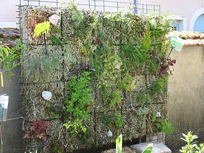 mur-vegetal-foire-bezouotte-2011