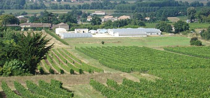 agri-truffe saint-maixan 33490 - gironde