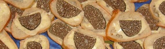 Truffes de Bourgogne Fraiches sur Toast